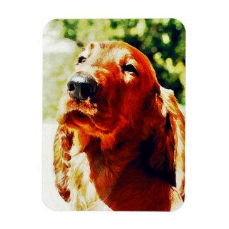Precious Irish Setter Puppy Vinyl Magnet