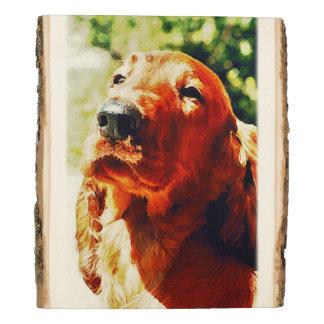 Precious Irish Setter Puppy Wood Panel