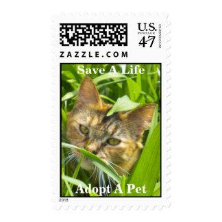 Precious Jungle Kitty Postage