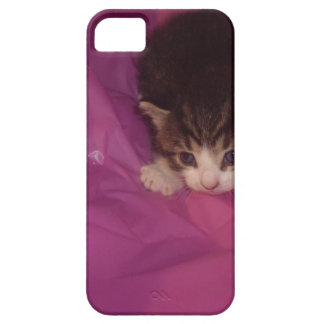 Precious Kitten iPhone SE/5/5s Case