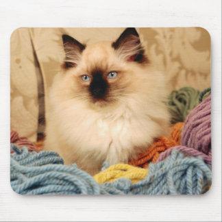 Precious Kitty Mouse Pad