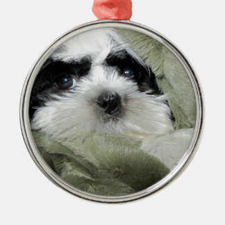 Precious Little Shih Tzu Puppy Metal Ornament