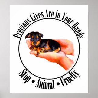 Animal Cruelty Posters | Zazzle