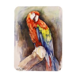 Precious Parrot Premium Magnet