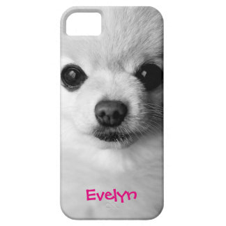 Precious Pomeranian iPhone SE/5/5s Case