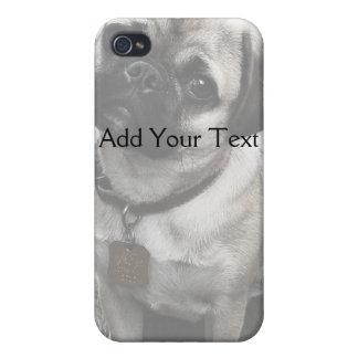 Precious Pug Puppy in Black and White iPhone 4 Case