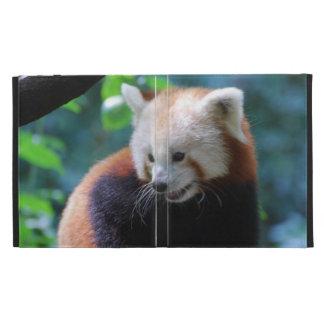 Precious Red Panda Bear iPad Folio Cover