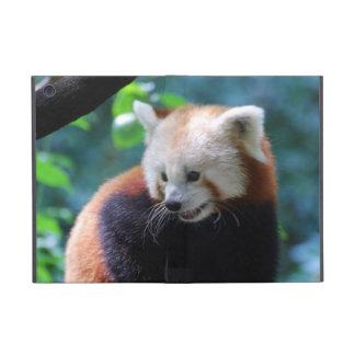 Precious Red Panda Bear Covers For iPad Mini