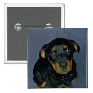 Precious Rottweiler Puppy Button 2 Inch Square Button