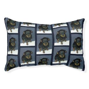 Rottweiler Dog Dog Beds Zazzle