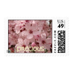 Precious stamps Pink Spring Tree Blossoms Postage