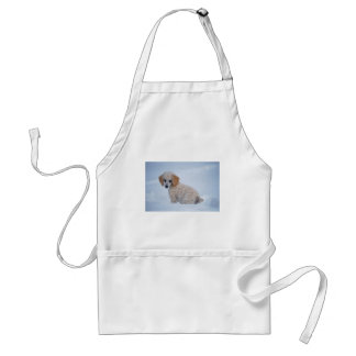 Precious White Poodle Puppy in Snow Adult Apron