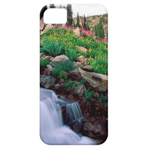 Precipitación de la cascada del parque Wyoming de iPhone 5 Cárcasas
