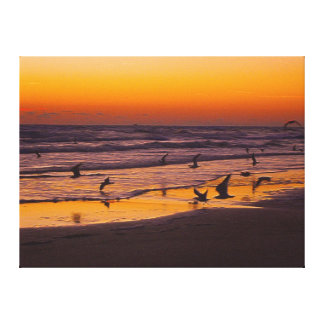 Precipitación de la madrugada de pájaros en el bor impresión en lienzo estirada