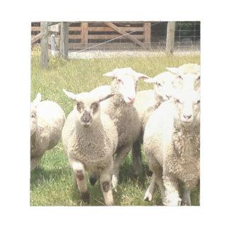 Precipitación de las ovejas libreta para notas