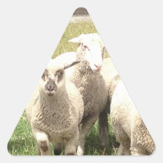 Precipitación de las ovejas pegatina triangular