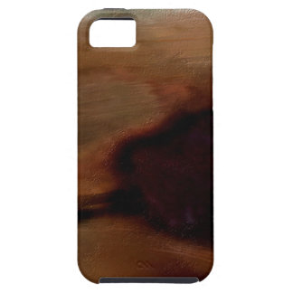 Preconceived Contrast iPhone 5 Covers