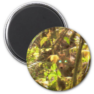 Predator in the Brush Woods Nature Photography Art 2 Inch Round Magnet
