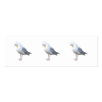 Preening Gull. Mini Business Card