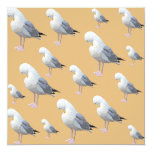 Preening Gull Pattern, Sketched Style on Tan. Custom Announcement