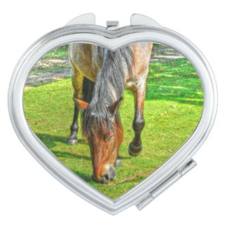 Preening New Forest Pony for Horse-lovers Makeup Mirror