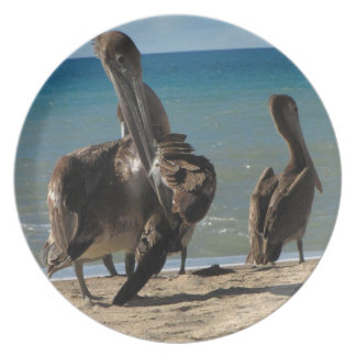 Preening Pelican Party Plate