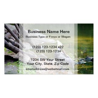 preening pelican slider turtle back photo c.jpg business card