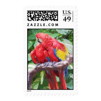 Preening Scarlet Macaw Art Postage Stamps
