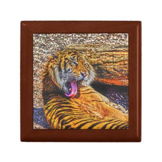 Preening Sumatran Tiger Big Cat Wildlife Art Keepsake Box