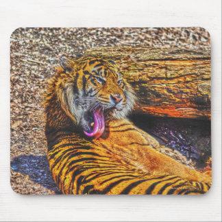 Preening Sumatran Tiger Big Cat Wildlife Art Mouse Pad