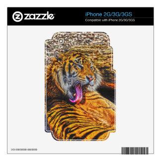 Preening Sumatran Tiger Big Cat Wildlife Art Skin For iPhone 3GS