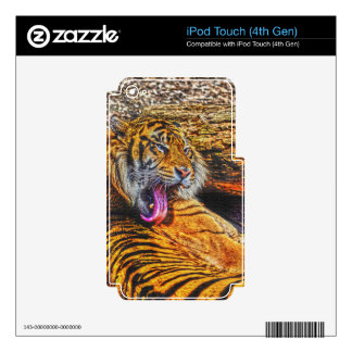 Preening Sumatran Tiger Big Cat Wildlife Art Skin For iPod Touch 4G