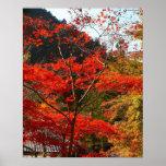 Prefectura de Saitama, Japón Posters