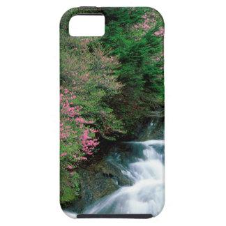 Prefectura de Tochigi de la cascada Nikko Japón iPhone 5 Cárcasa
