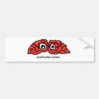 Prefrontal Cortex Bumper Sticker