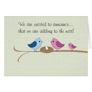 Pregnancy Announcement Filling the Nest