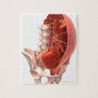 Pregnancy Jigsaw Puzzle