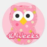 Pregnancy Sticker - Owl 16 Weeks Round Sticker