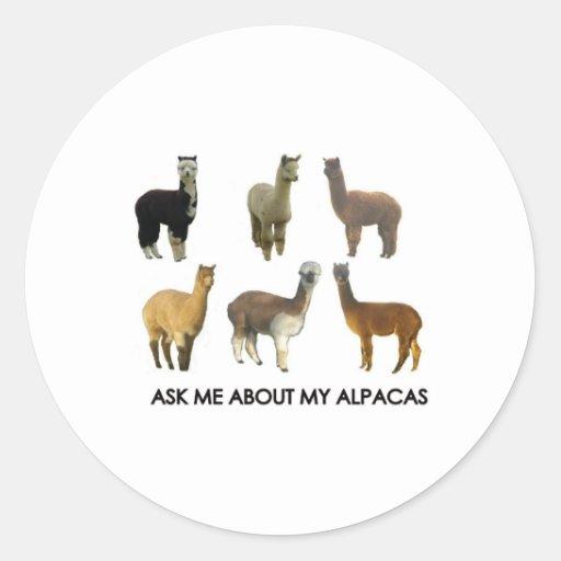 Pregúnteme acerca de mis alpacas pegatina redonda
