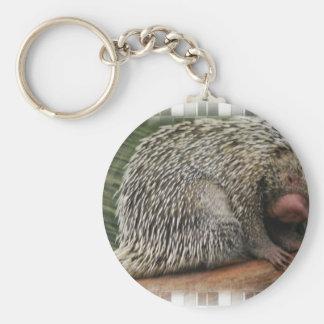 Prehensile-Tailed Porcupine Keychain