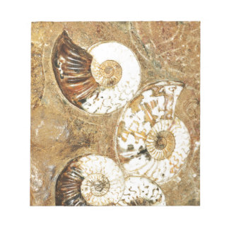 Prehistoric background with fossil shells notepad