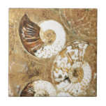 """Prehistoric background with fossil shells tile<br><div class=""""desc"""">Prehistoric background with fossil shells</div>"""