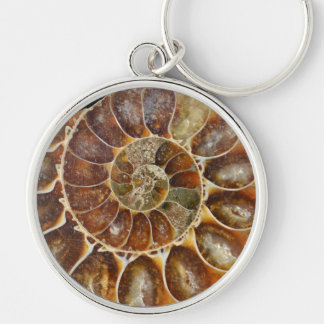 prehistoric fossil snail shell black animal nature keychain