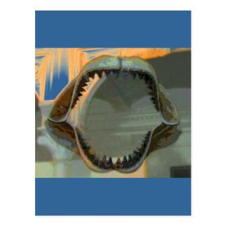 Prehistoric Jaws CB Postcard