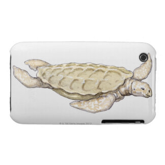 Prehistoric Turtle iPhone 3 Covers