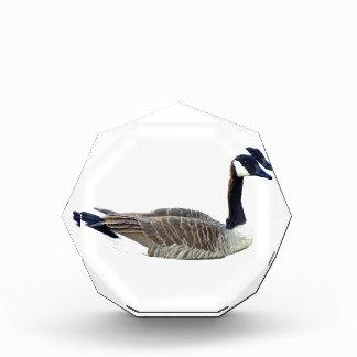 Premio de acrílico del octágono del ganso canadien