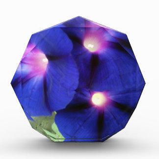 Premio de acrílico floral
