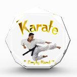 Premio del karate