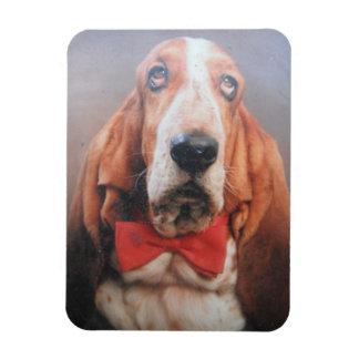 Premium Magnet Basset Hound In Red Bow Tie