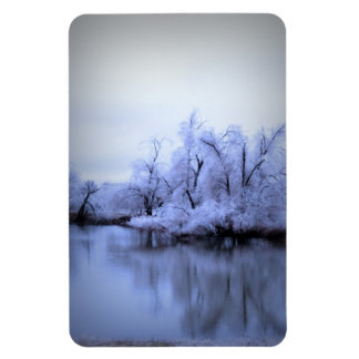 Premium Magnet, Icy Pond and Willows